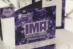 Photographer - Paul Sherwood | paul@sherwood.ie | 087 230 9096 | Irish Magazine Awards 2018, Lansowne Rugby Club, Dublin. November 29, 2018